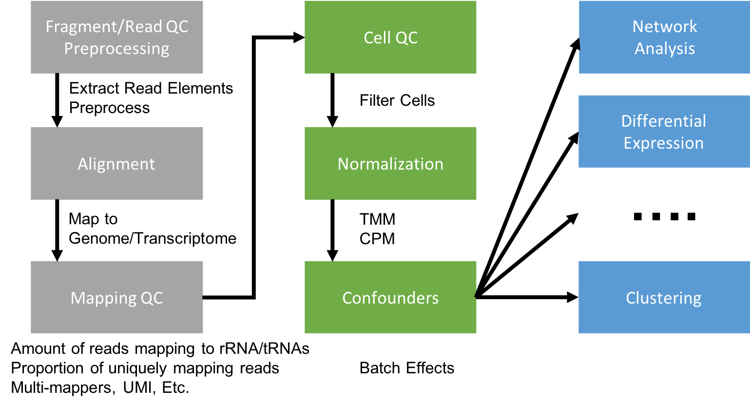 Generating a Gene Expression Matrix   UC Davis