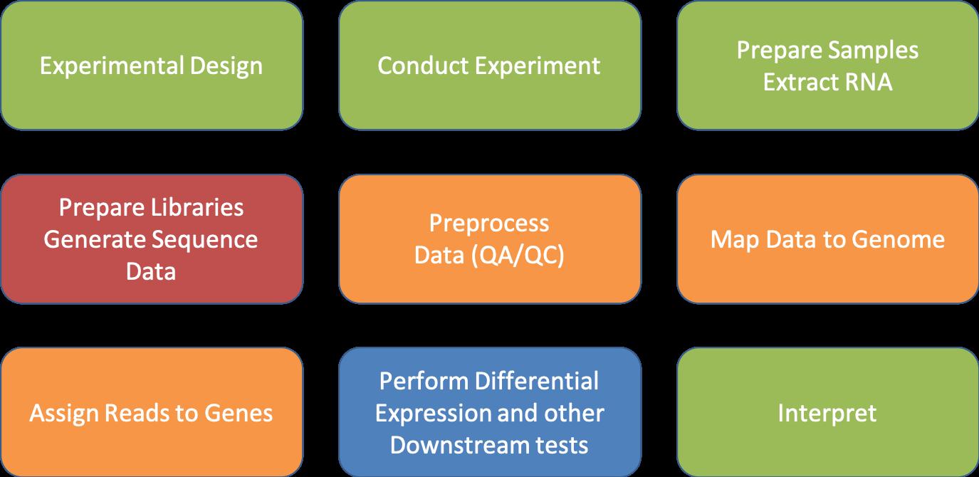 Closing Thoughts | UC Davis Bioinformatics Core March 2019 RNA-Seq